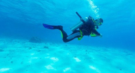 Where to dive around the world – Padi Guide!