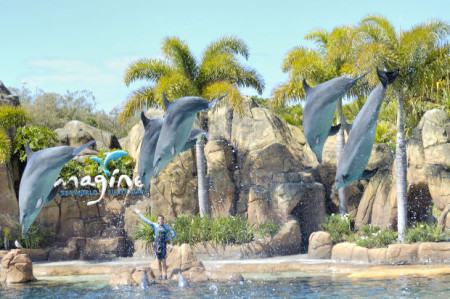 Graybit Around the World RTW -Travel family vacation fun stuff to do seaworld florida