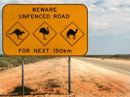 Graybit Around the World RTW -Travel family vacation fun stuff to do-The Gold Coast, Australia road sign