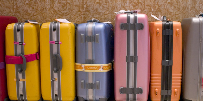 Luggage Options: What's Best For Your Trip? | Graybit