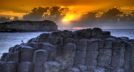 4 Reasons to Make a Trip to Giant's Causeway